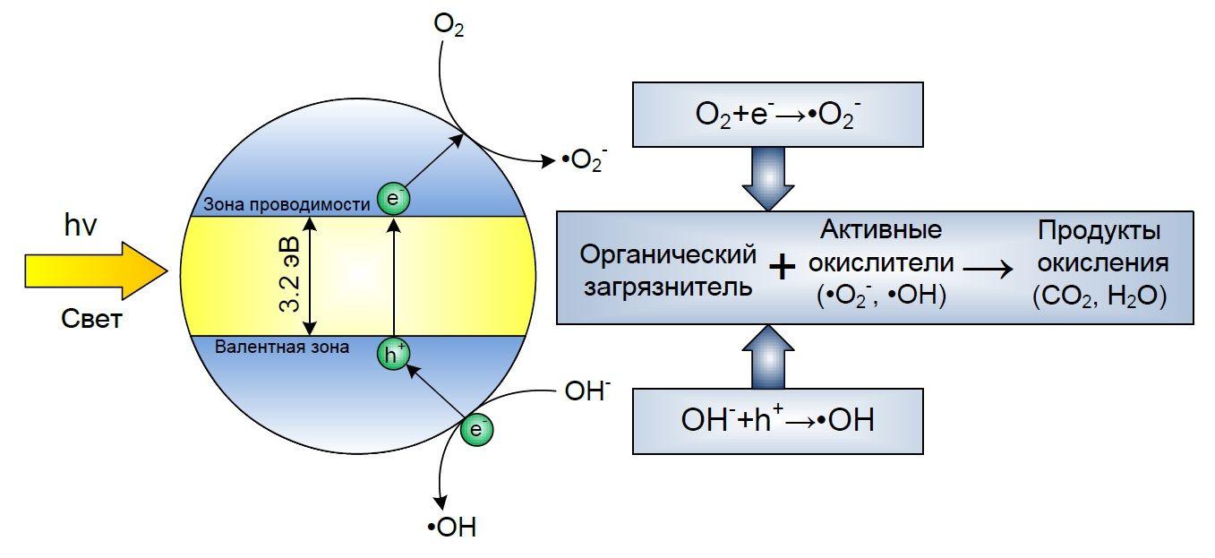 Схема образования частиц на поверхности TiO2 под действием света